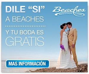 Http Www Beaches Com Weddingmoons Weddings Wedding Designer Cfm